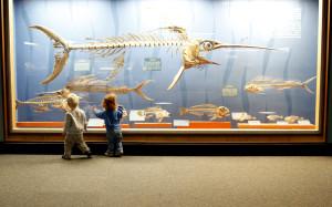 kids at museums
