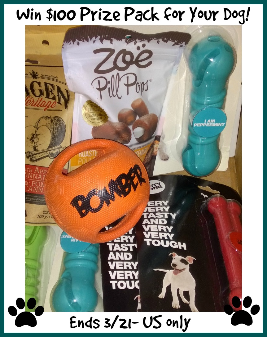 hagen dog prize pack