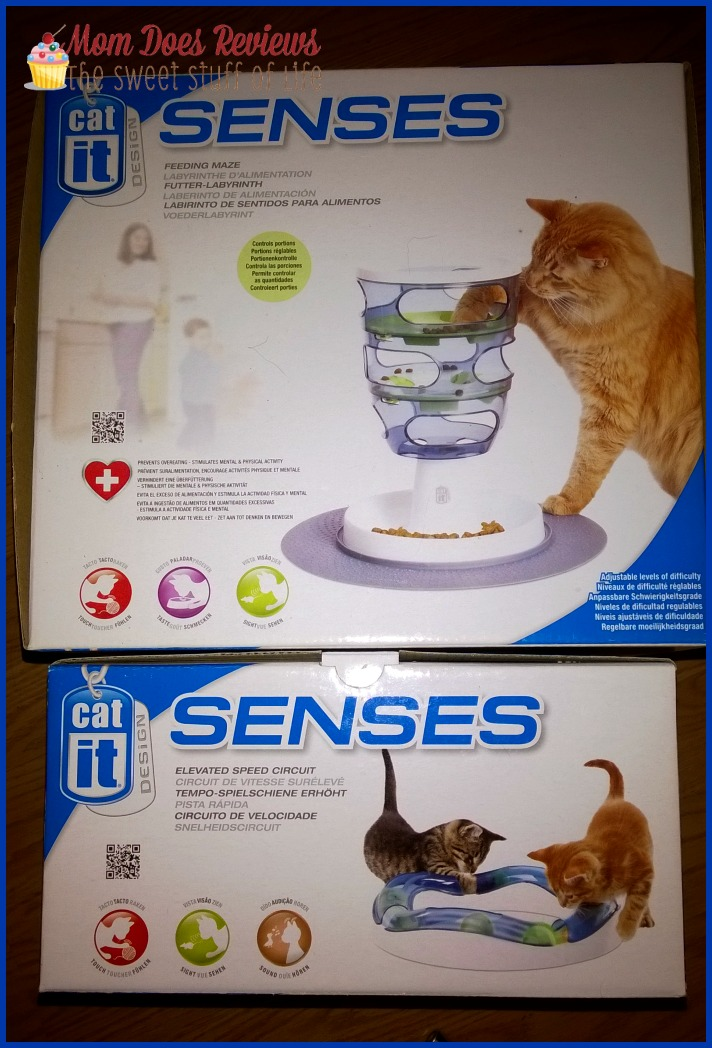 senses cat both toys