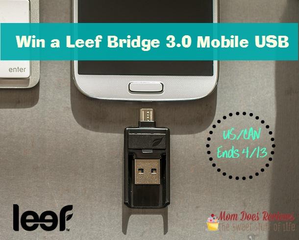 leef bridge giveaway