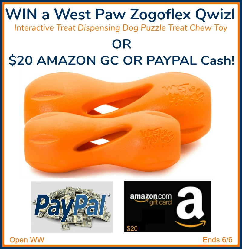 Qwizl dog toy giveaway button - Weekly Giveaways