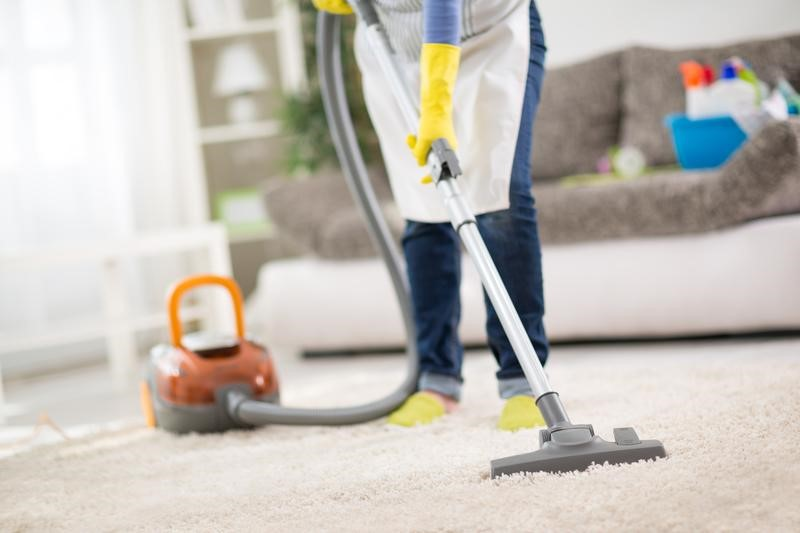 Which Vacuum is Best for Your Home?