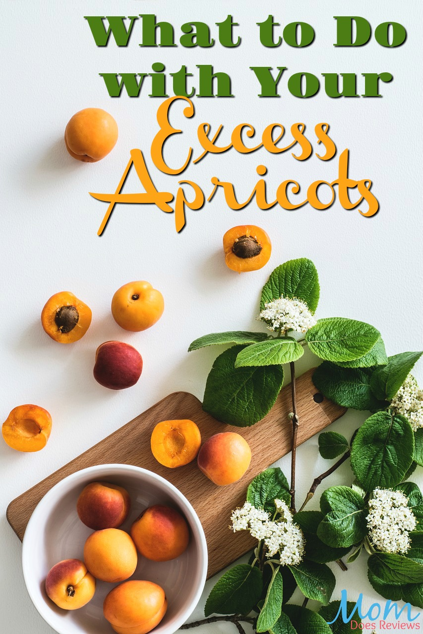 Home Grown Recipes: What to Do with Your Excess Apricots #fruit #recipes #homegrown #apricots