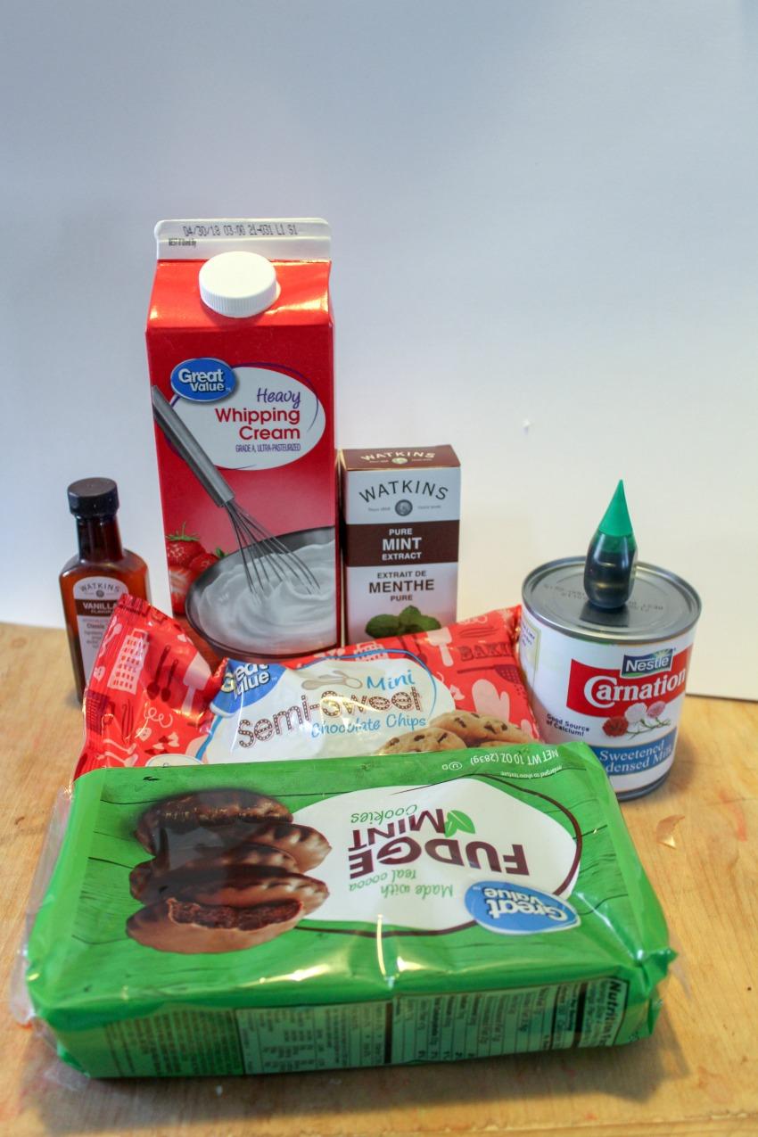 No-Churn Mint Chocolate Chip Ice Cream Recipe