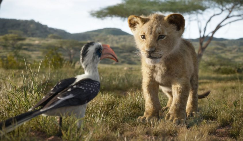 """The New Trailer for Disney's """"The Lion King"""" is HERE!! See It In theaters on July 19. #TheLionKing"""
