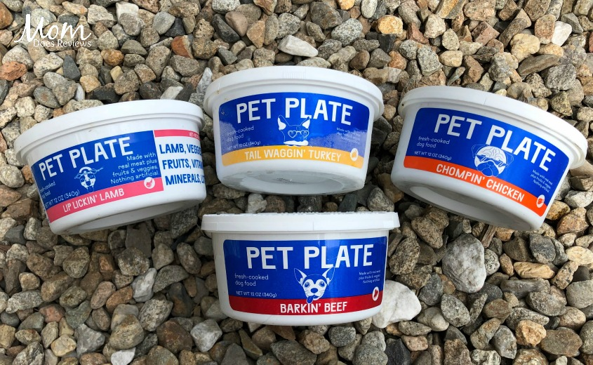 Pet Plate- Healthy Food Cooked Fresh for your Dog! #MDRSummerFun